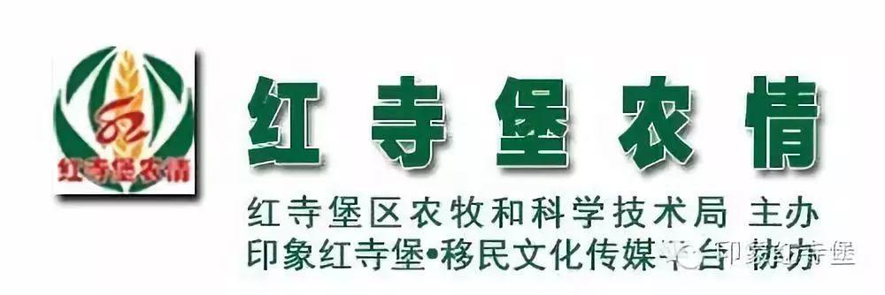 农户快看||壹父亲波惠民政策,戳开即知概微...