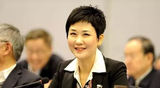 中电集团董事长_中电集团南京55所图片