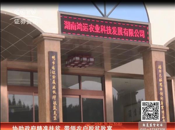 CCTV证券资讯《每周财经资讯》栏目 走进湖南鸿运农业