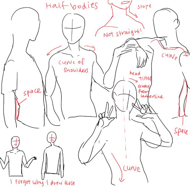 初学绘画者应该怎么样去画腿