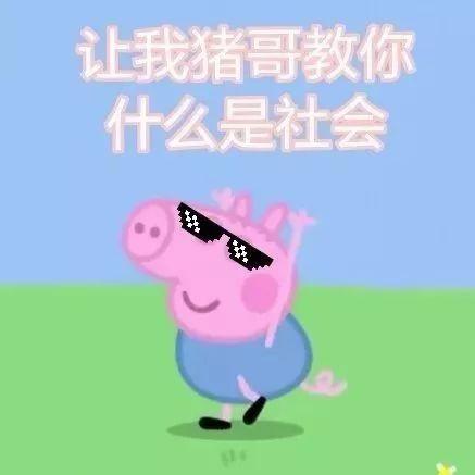 女人梦见猪和我说话是什么预兆