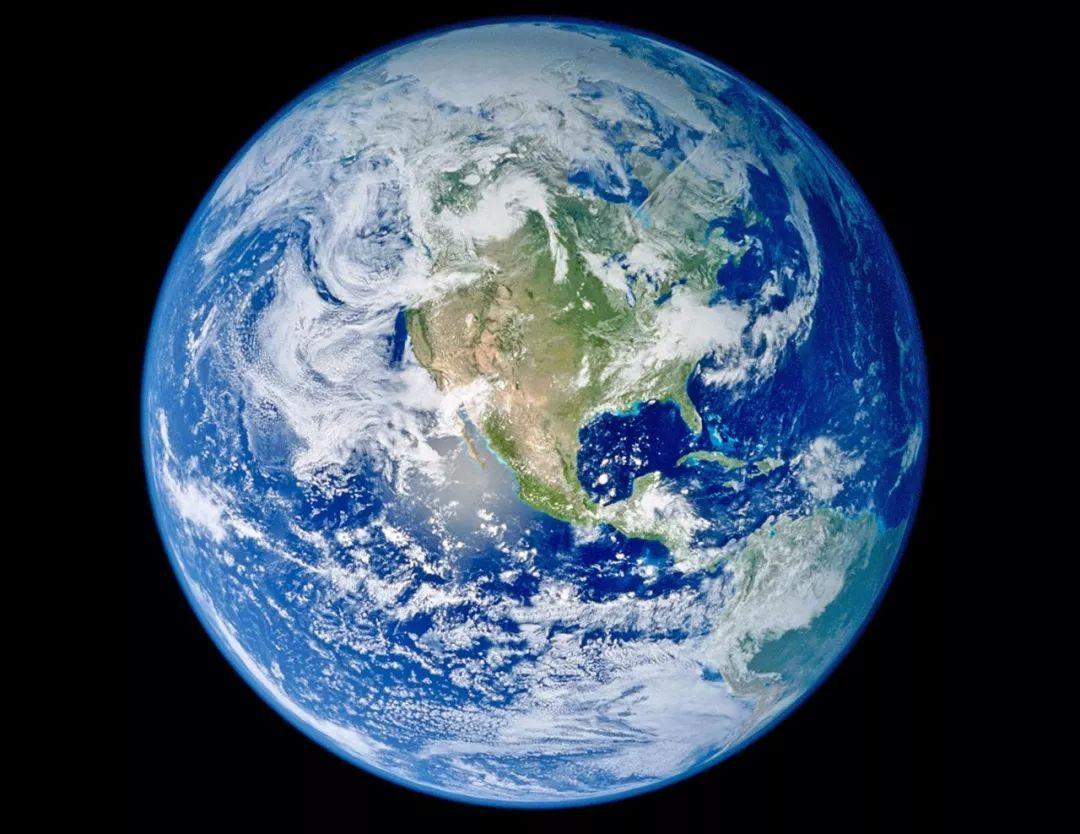 地球上的生命植物最重,人类总重甚至比不过病毒