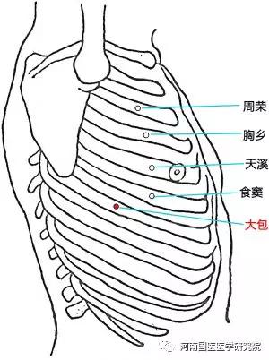 支沟穴视频_中医专长医师资格考试--大包穴: 主治胸胁胀满,咳嗽,气喘