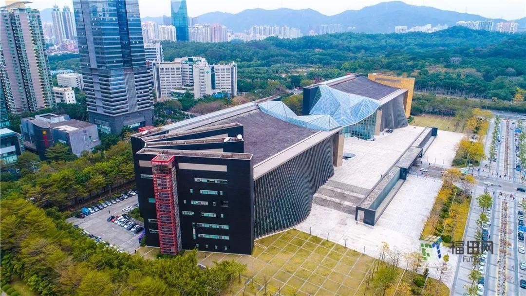 深圳图书馆的南侧建筑做成了书本状图片