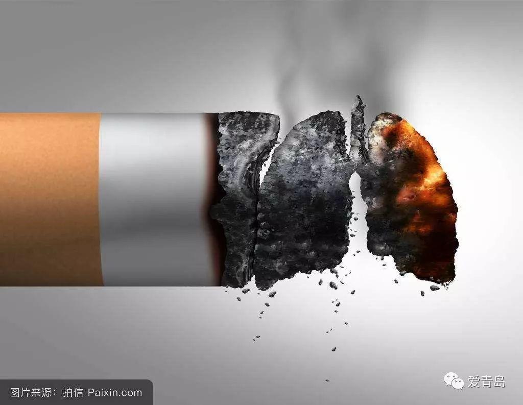世界无烟日   给