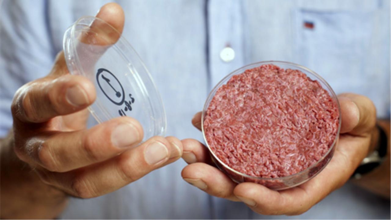 如果人造猪肉出现在市场,对农村养猪户有什么影响 看完心情复杂