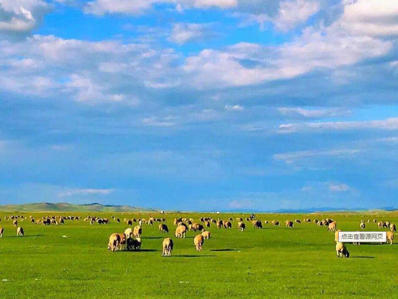 深圳到呼伦贝尔大草原怎么去,需要多长时间