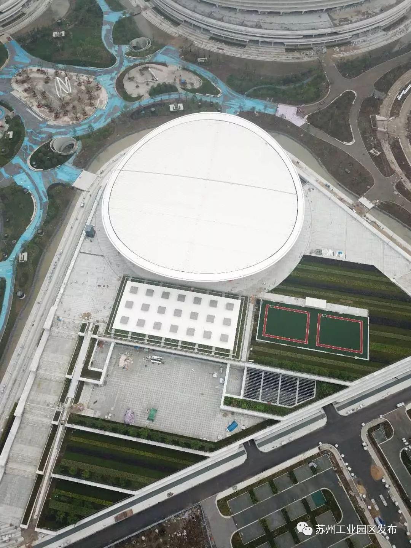 奥体中心游泳馆30次(剩余27次)游泳卡便宜转让-重庆游泳用品