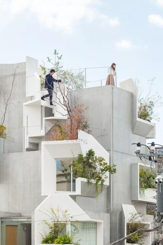 """伊东丰雄徒弟设计的房子用混凝土堆砌了众人惊艳的""""森林之家"""" 行业新闻 丰雄广告第3张"""