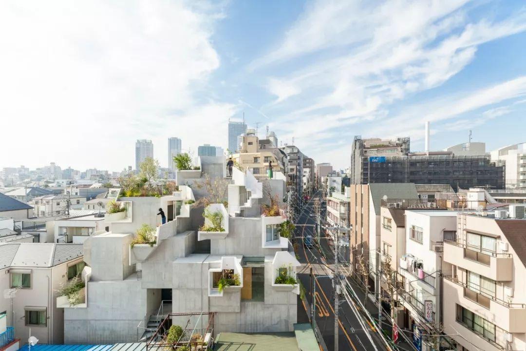 """伊东丰雄徒弟设计的房子用混凝土堆砌了众人惊艳的""""森林之家"""" 行业新闻 丰雄广告第1张"""
