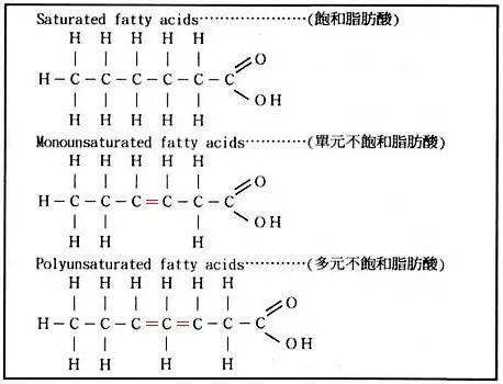 饱和脂肪酸:脂肪酸分子中没有不饱和的双键,都是饱和键的脂肪酸.