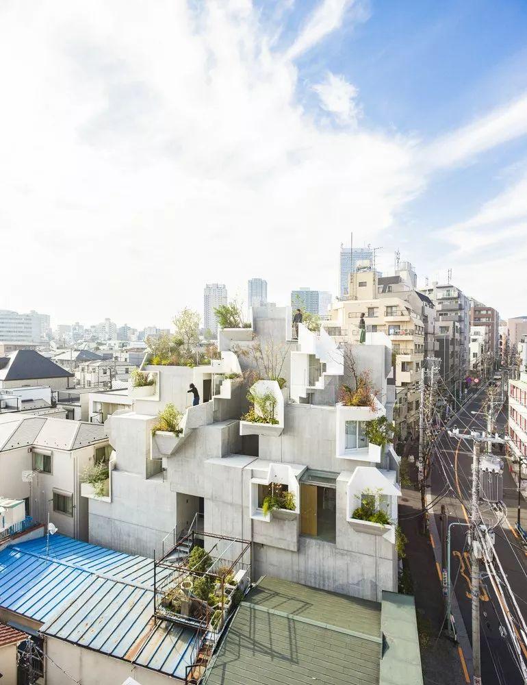 """伊东丰雄徒弟设计的房子用混凝土堆砌了众人惊艳的""""森林之家"""" 行业新闻 丰雄广告第4张"""