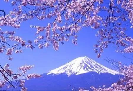 高考后日本留学申请全攻略