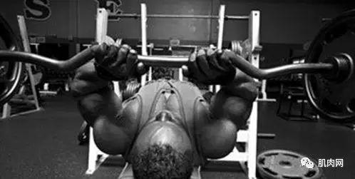 肱三头肌锻炼:如何侧重长头!