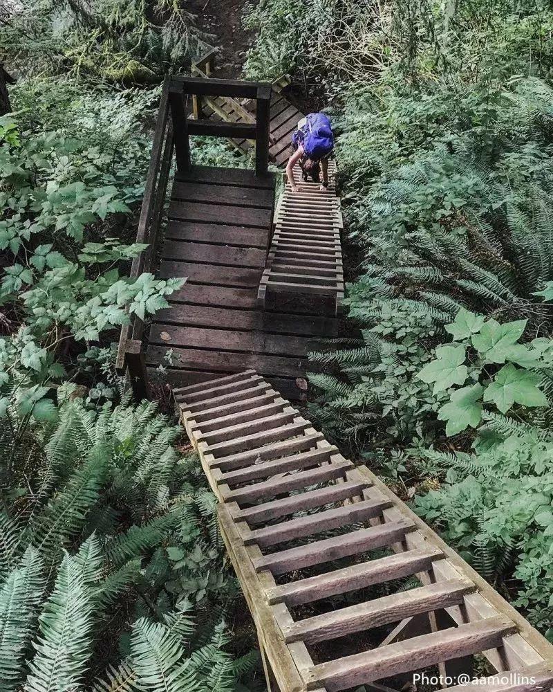 从森林到大海,夏日经典步道推荐