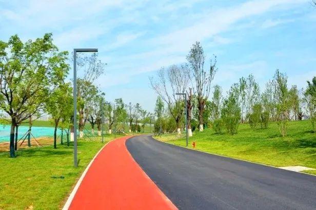 在这里骑车也是个不错的选择呢 跑道边杨柳依依,清风徐徐 不仅能跑步