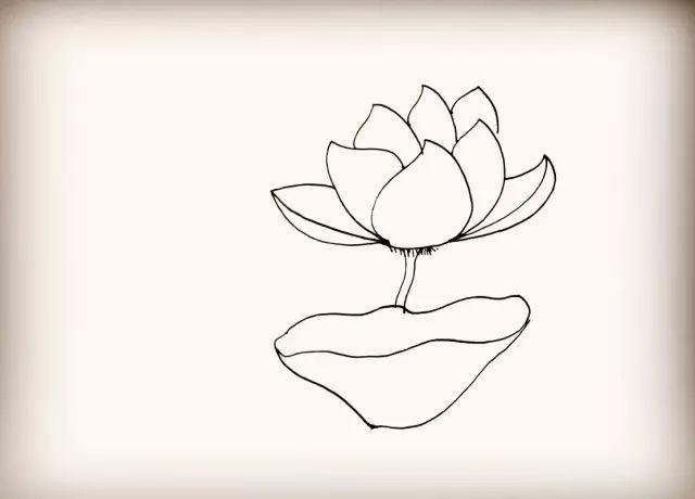 母婴 正文  首先画上它的花瓣.像一个桃子的形状.图片