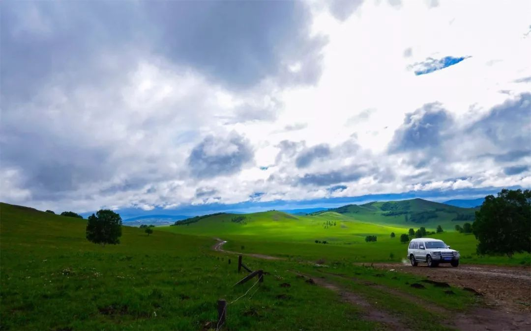 内蒙古的夏天叫呼伦贝尔