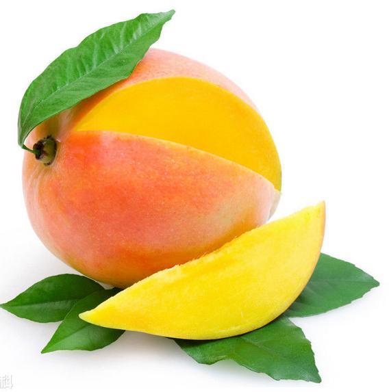 您觉得哪种芒果最好吃 吃货们都说这几种芒果超好吃,您觉得呢