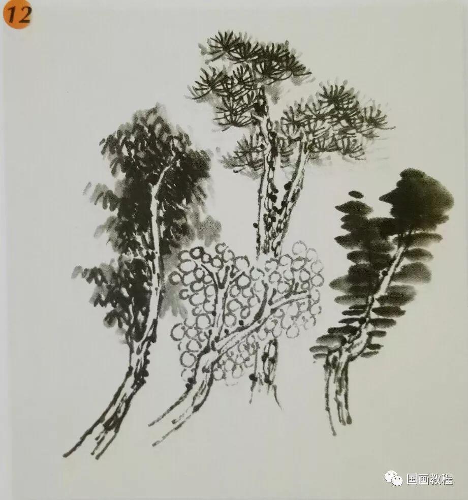 国画山水基础教程—常见树的画法图片