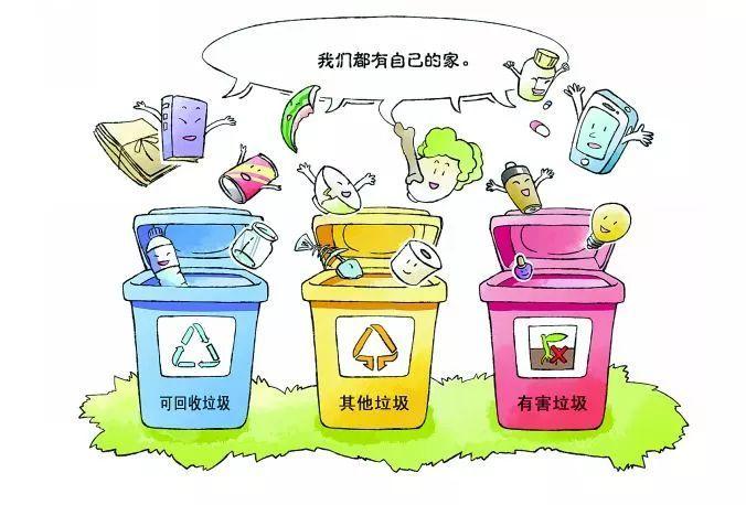 垃圾分类|从现在开始图片