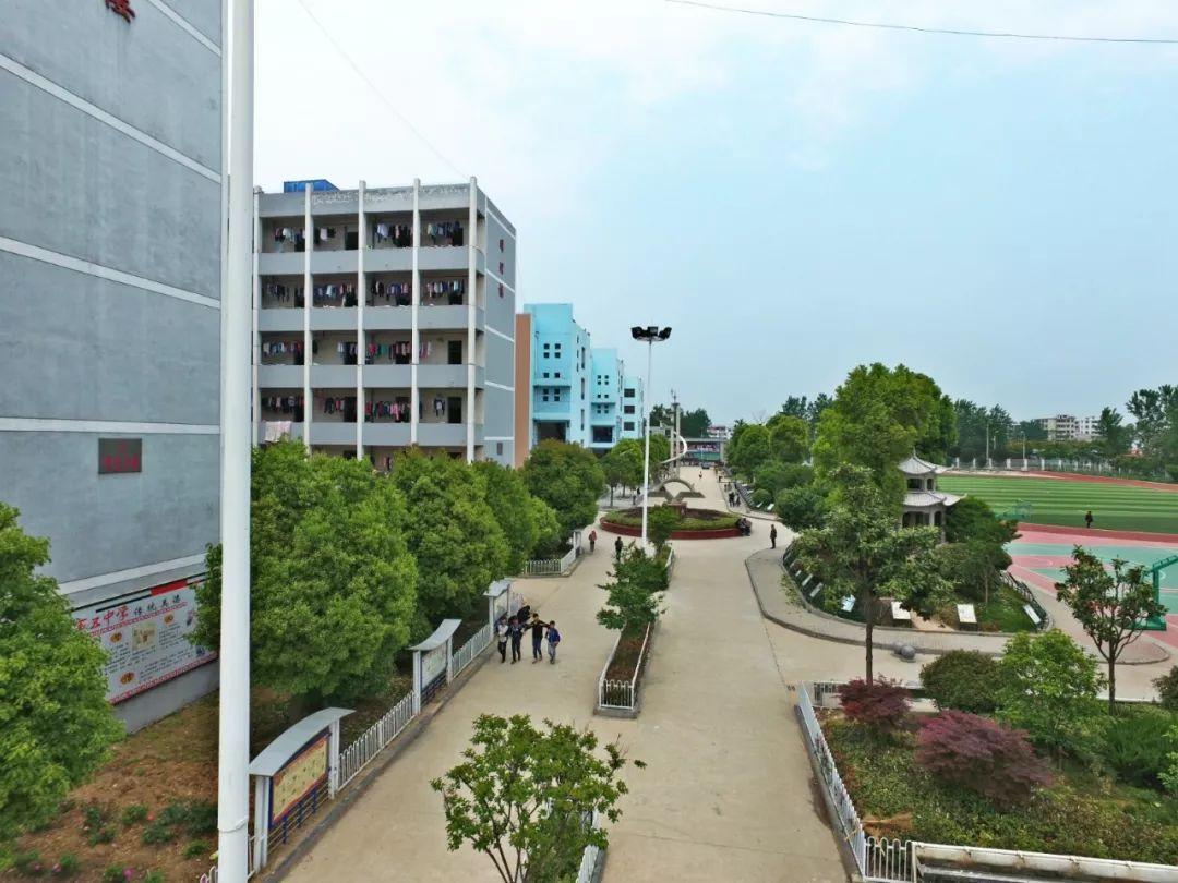 在利辛这个高中上学,挣钱,考不上分数高中湖北省费用各科大学的图片