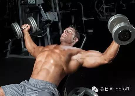 努力健身一个月到底能长多少肌肉?