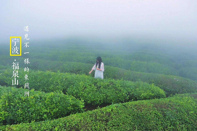 到浙里做美梦,心宿宁波-东钱湖福泉山下回归本心如梦如诗的田园生活
