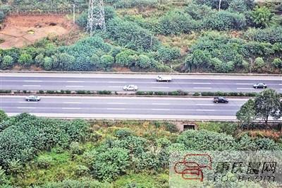川渝拟取消高速路省界收费站 或实现跨省联网收费