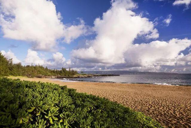 Stay丨每个旅行者,都有一个去夏威夷的梦