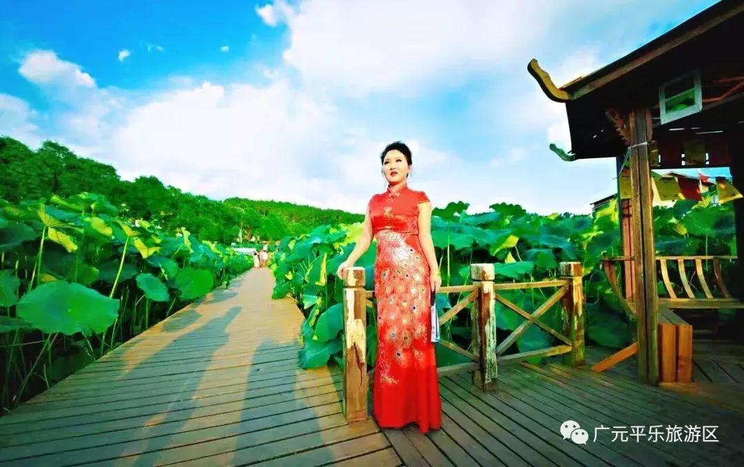 广元昭化第八届荷花节6月15日开幕