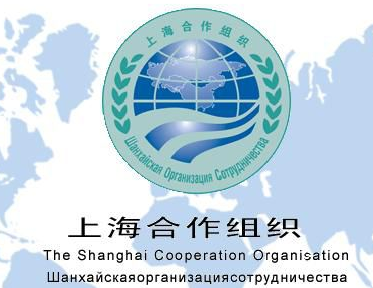上合组织经济总量占世界_晓组织图片