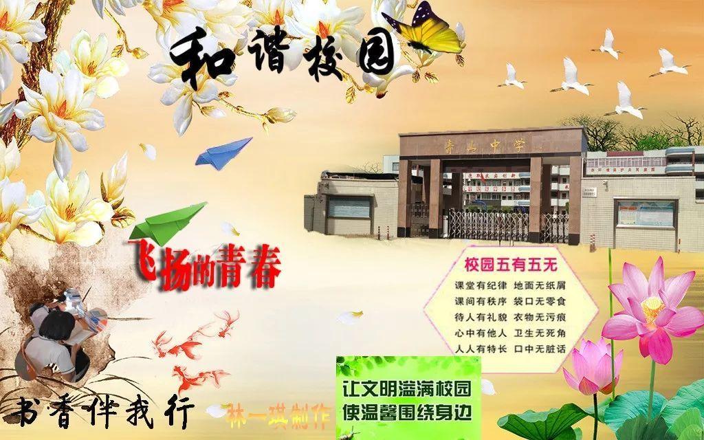 青山中学开展第一届diy电脑海报设计比赛图片