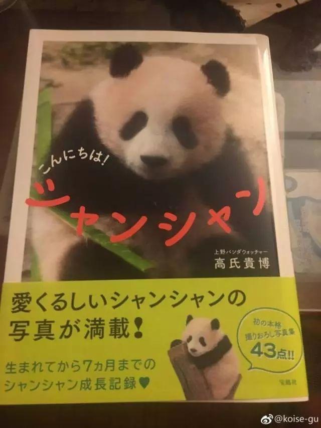 聚焦日本 旅日大熊猫香香一岁啦图片 51921 640x853