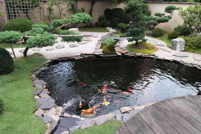 池子控 来聊聊你见过的几个大池