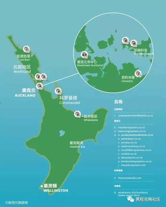 来了新西兰怎能不吃海鲜,吃遍南北岛,让你的舌尖陶醉!