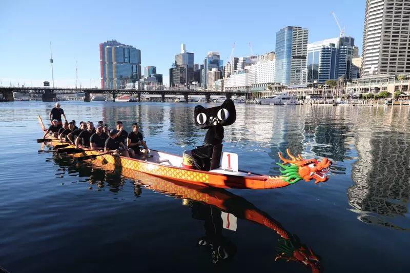 服气!天猫下单买个龙舟迎端午,超14米长的包裹还从杭州运到悉尼!