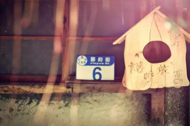 """失恋小妞开民宿,房间起名""""包生儿子房"""",连张信哲都为她点赞"""