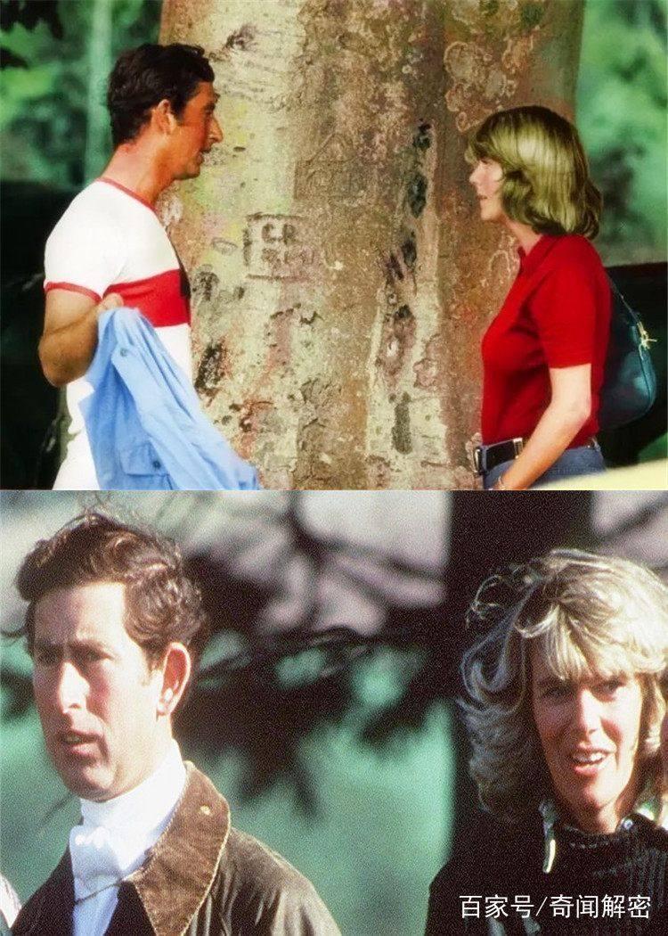 同是英国王储查尔斯王子的妻子,为何卡米拉会比戴安娜王妃幸福图片