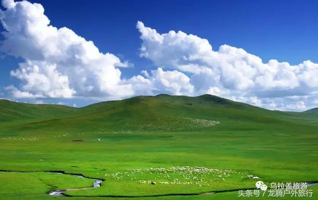 旅行|这才是乌拉盖草原正确的打开方式