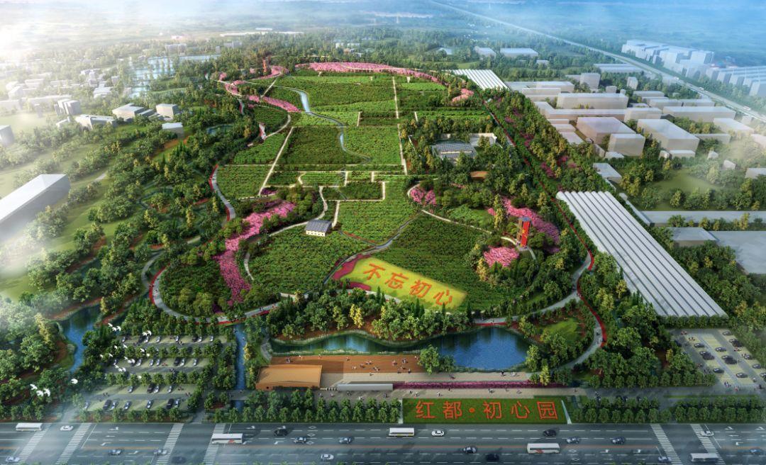 瑞金新城区规划图