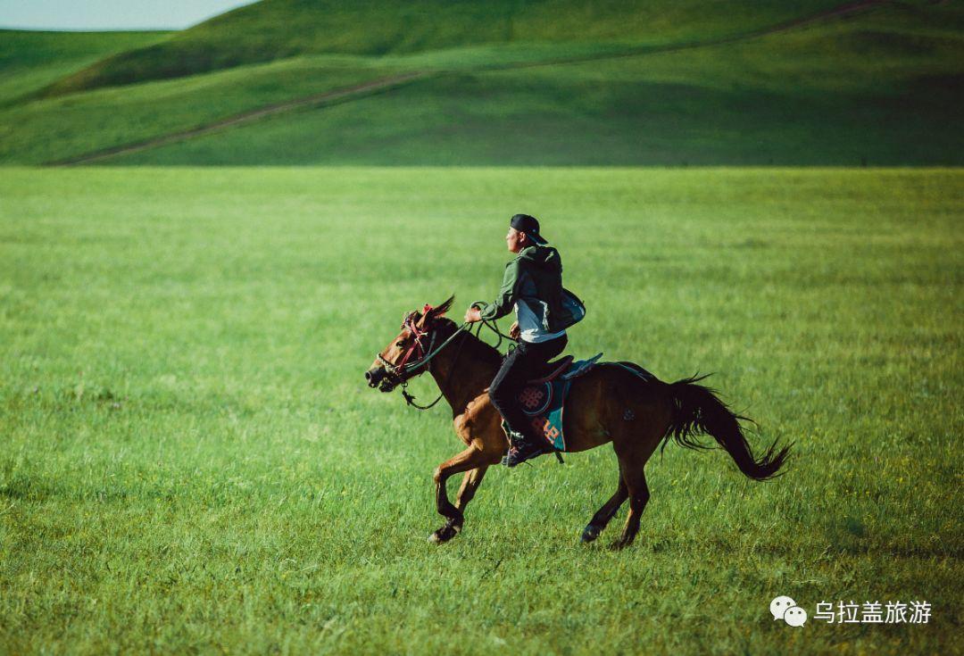 旅行| 这才是乌拉盖草原正确的打开方式