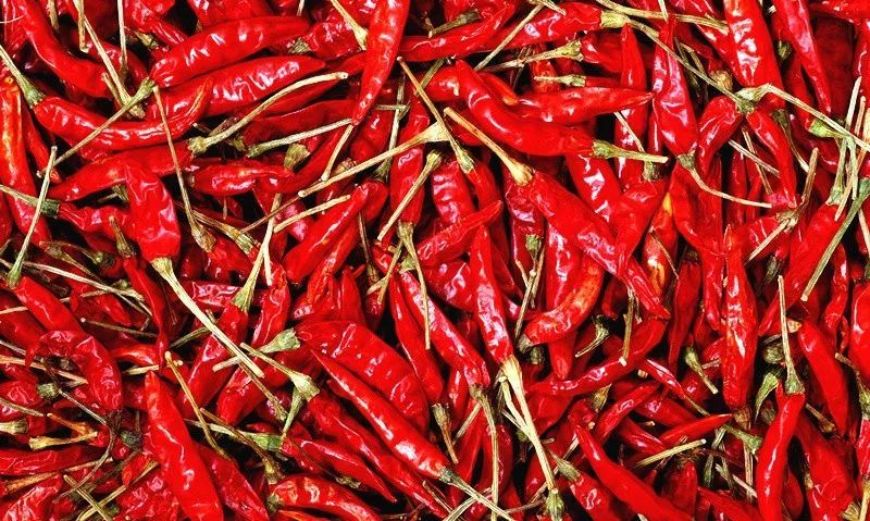 最辣椒的辣椒_世界上最辣的辣椒是什么椒