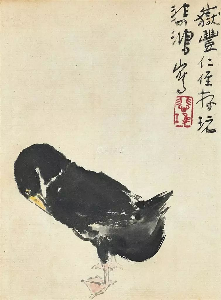 """"""" 画面似乎在说:""""有温柔的芦苇的陪护,即使陷入困境的鸭子也一定能图片"""