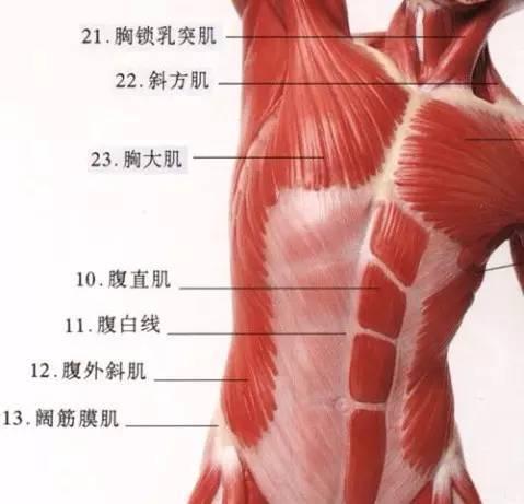 世爵娱乐致力于促进中国彩票业健康有序的发