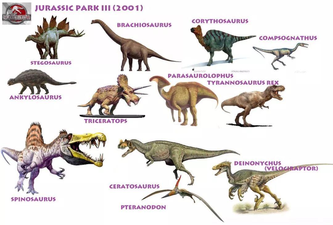 日本av波衣吉野多的英文名_视频:两分钟了解90个恐龙英文名