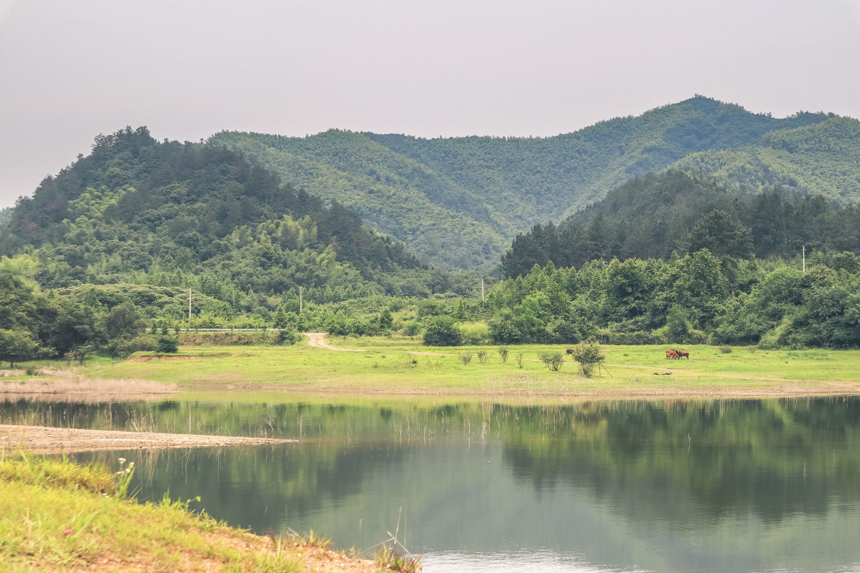 拥有最多高端酒店的县城安吉,我为何选择独住一栋民宿?