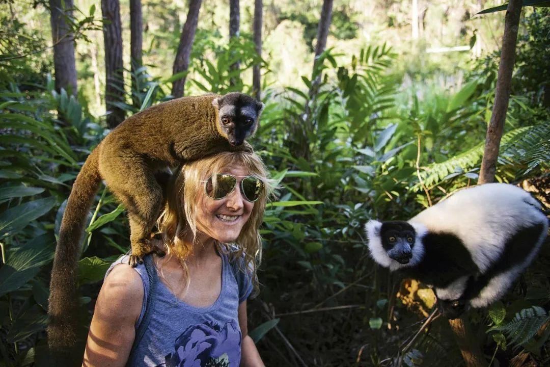 马达加斯加:远不止那部动画片