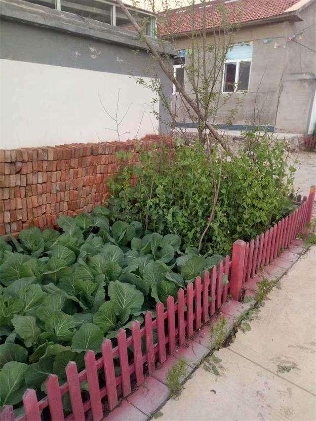 地址:内蒙古赤峰市喀喇沁旗美林镇小美林村15047633228图片