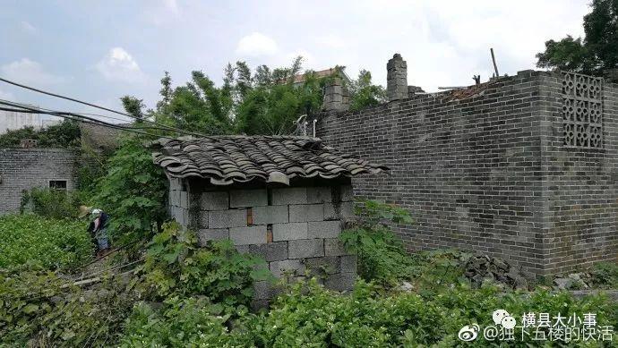 广西横县南乡镇各村人口_广西南宁横县西里村